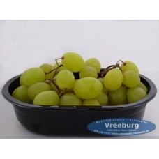 Druiven wit pitloos bakje 250 gram